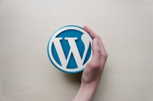 Choosing The Perfect WordPress Theme For Your Website: Consider These 10 Factors!